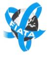 INTERNATIONAL FEDERATION OF FREIGHT FORWARDERS ASSOCIATION (FIATA)